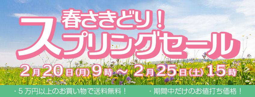春さきどり!スプリングキャンペーン
