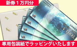 【新券】VJA(VISA)ギフトカード1万円分(1000円券×10枚)